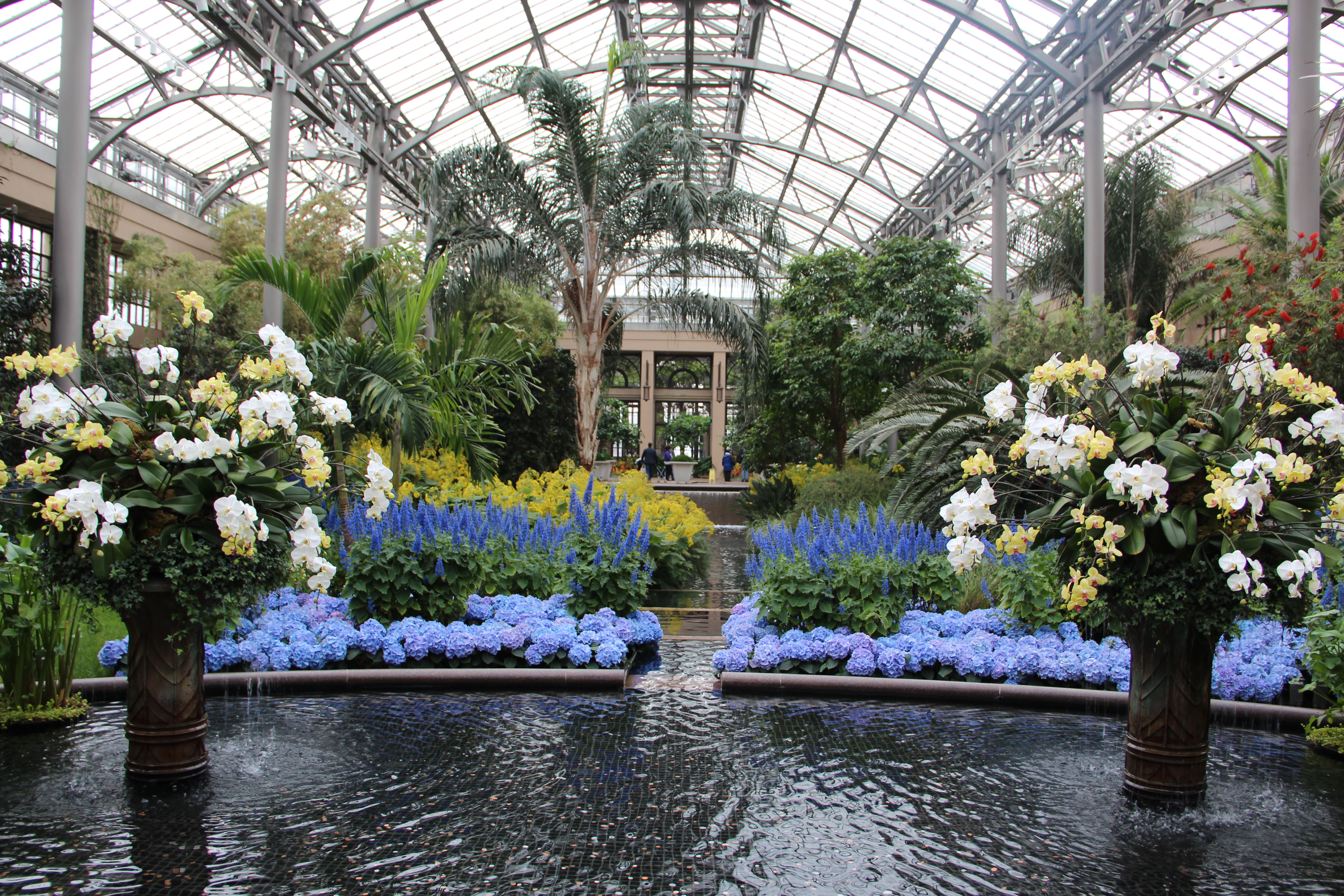 Longwood Gardens Summer Concerts: Of Longwood Gardens And Putting Down Roots